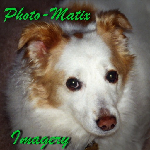 Photo-Matix Imagery